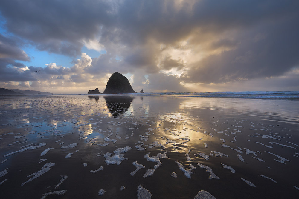 Stormy Cannon Beach. The Pacific Northwest coast in late fall and winter is beautiful - there are often breaking storms in between the relentless rain which we were lucky to catch on this particular sunset along with some washed up foam and a well timed gull.