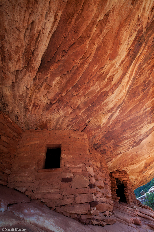 This is an Ancestral Puebloan ruin that is now protected as part of the new Bears Ears National Monument. I took this photo in my early days of nature photography and the experience visiting this place and others like it helped form my love for Utah's wild places.