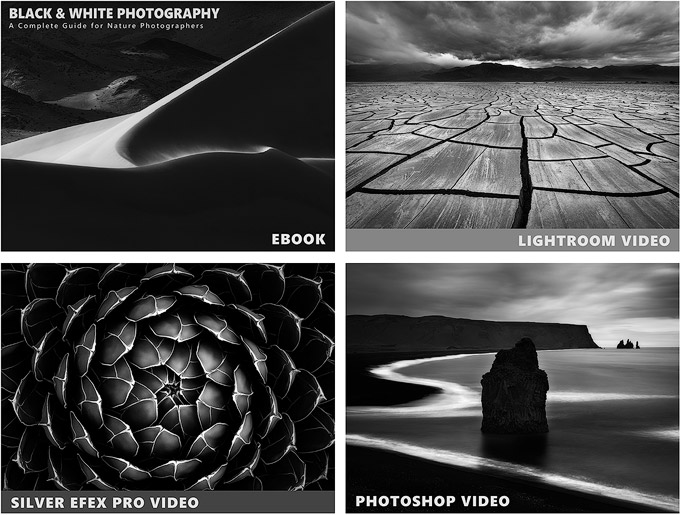 Black white photography complete ebook video course