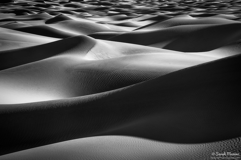 Death Valley Dunes:  Of all the places I have visited, I have spent the most time in Death Valley National Park. During each of my trips to the park, I always return to this dune field because it is such an excellent place to explore curves, patterns, and textures. Here, I used a long lens to help compress the layers.