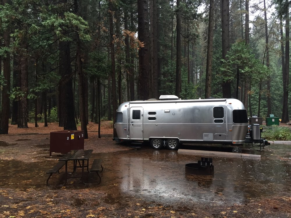 A wet morning in Yosemite National Park