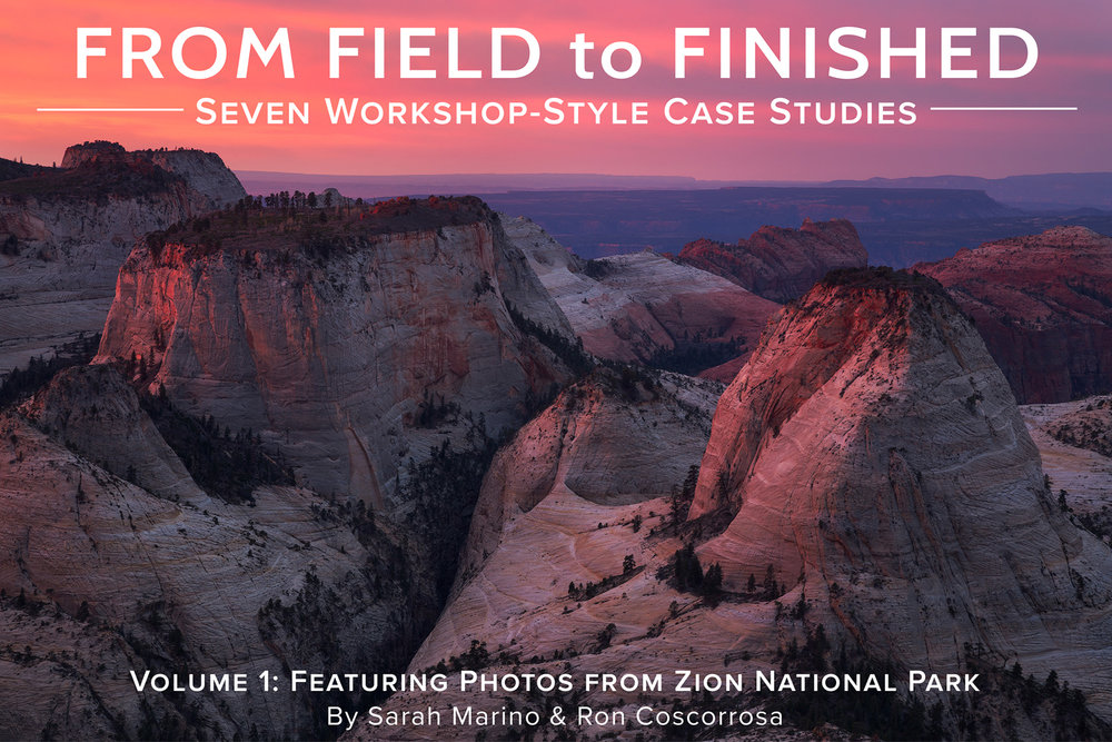 Field-to-Finished-Zion-Cover-1500px.jpg