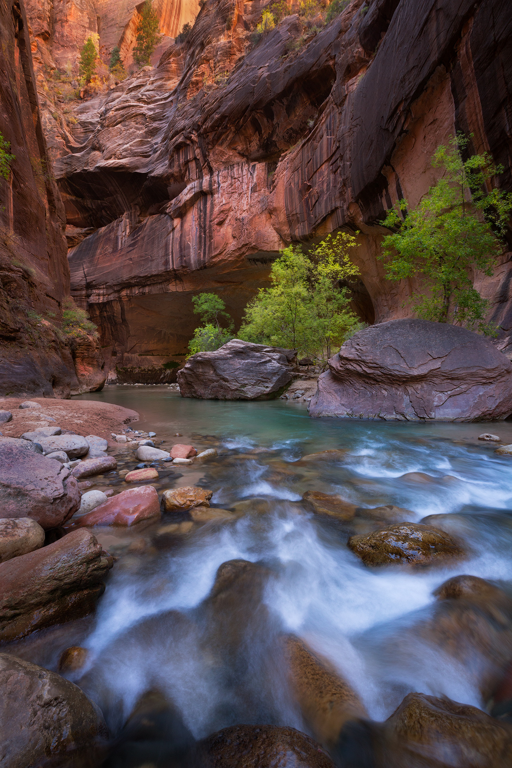 Field-to-Finished-Zion-Narrows-1500px.jpg