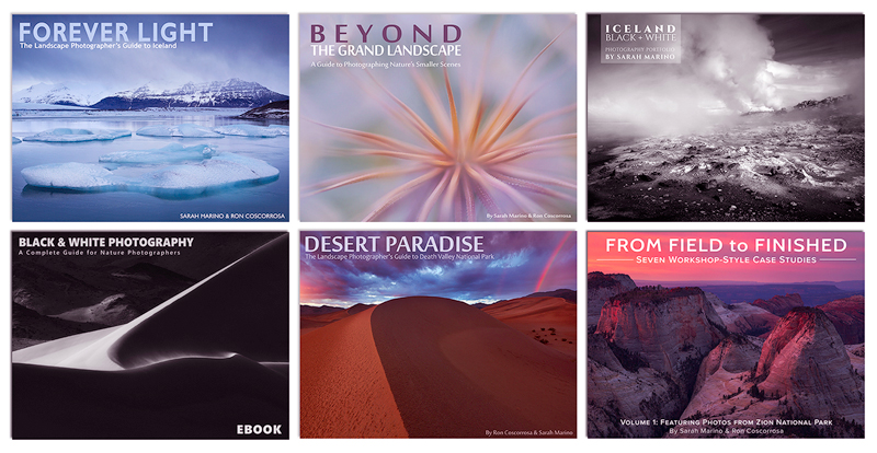 Layered-Covers-All-Six-Books-800px.jpg