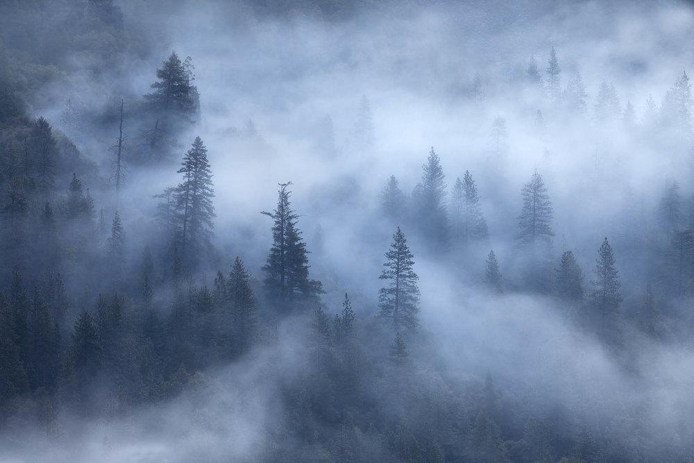 Foggy Yosemite