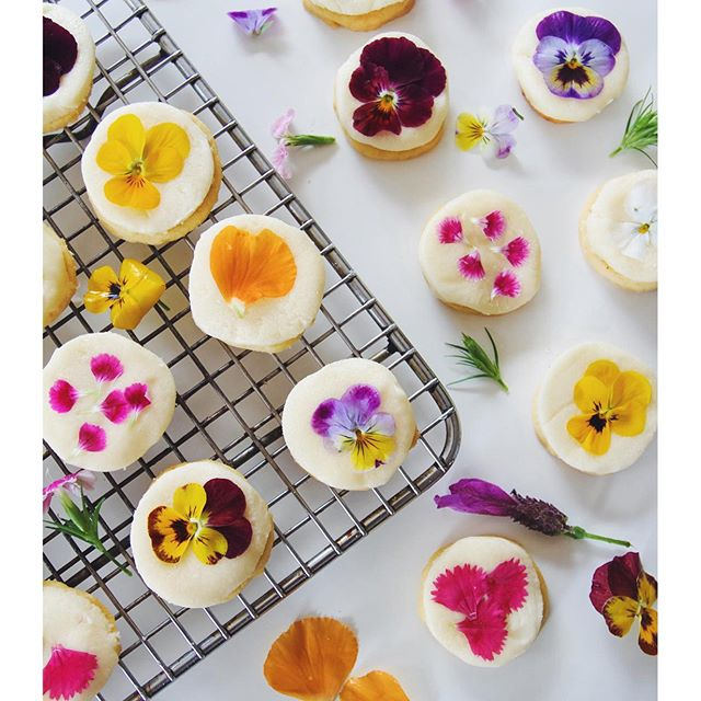 5.Edible-flower-cookies-complete-with-a-sugar-free-and-vegan-fondant-icing-I-posted-the-recipe-up-on-w.jpg