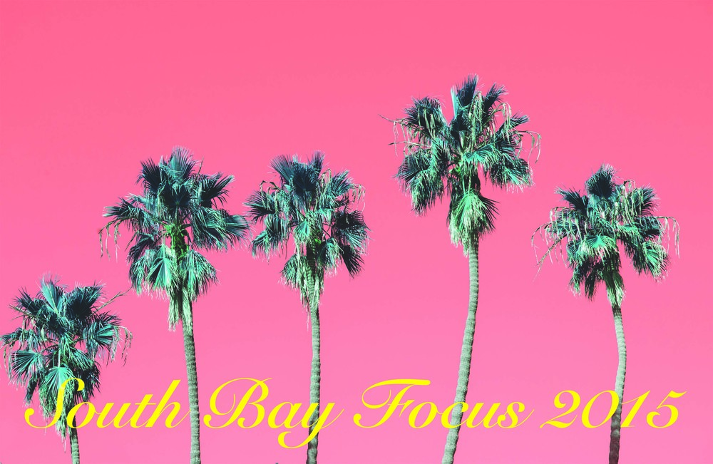 South Bay Focus 2015