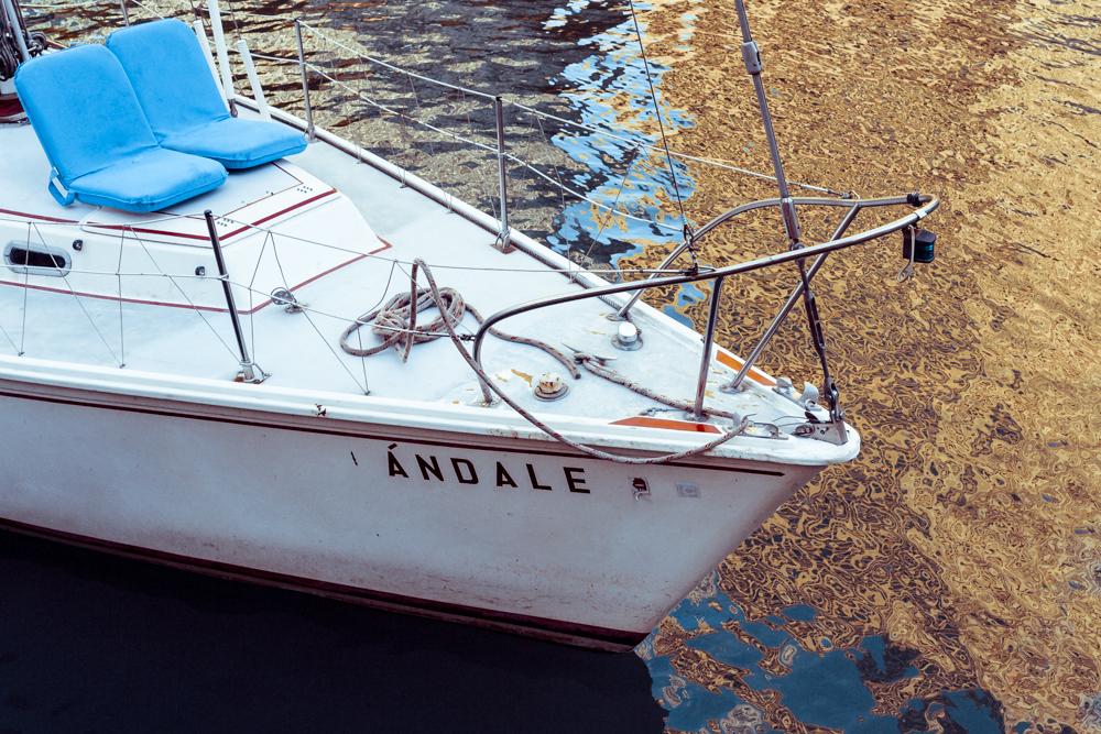 Ándale!_11102014-973B3277.jpg