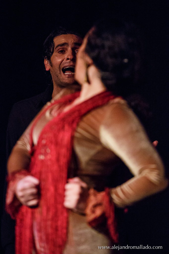 Chicago Flamenco Festival 2016 at Instituto Cervantes Chicago
