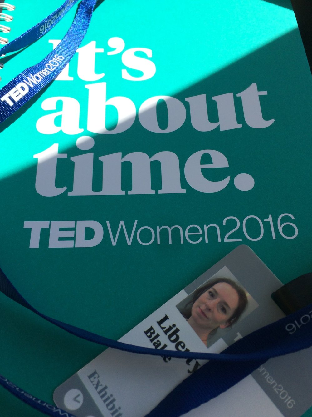 Tedwomen 2016 Jann Haworth Work in progress