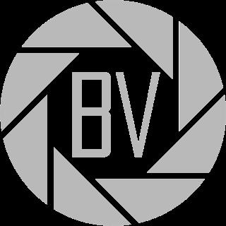 Benji Vuong Logo