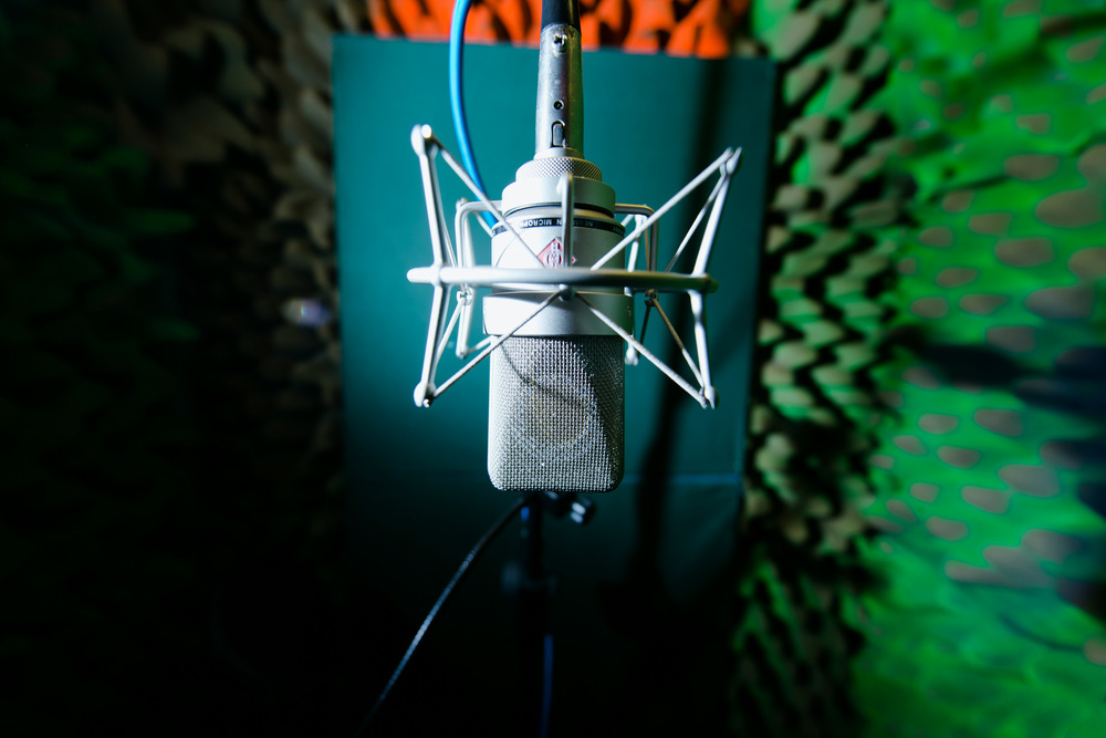 Vocal booth, with one of our lovely mics