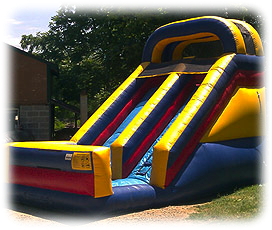 Dual Lane Backyard Slide.jpg