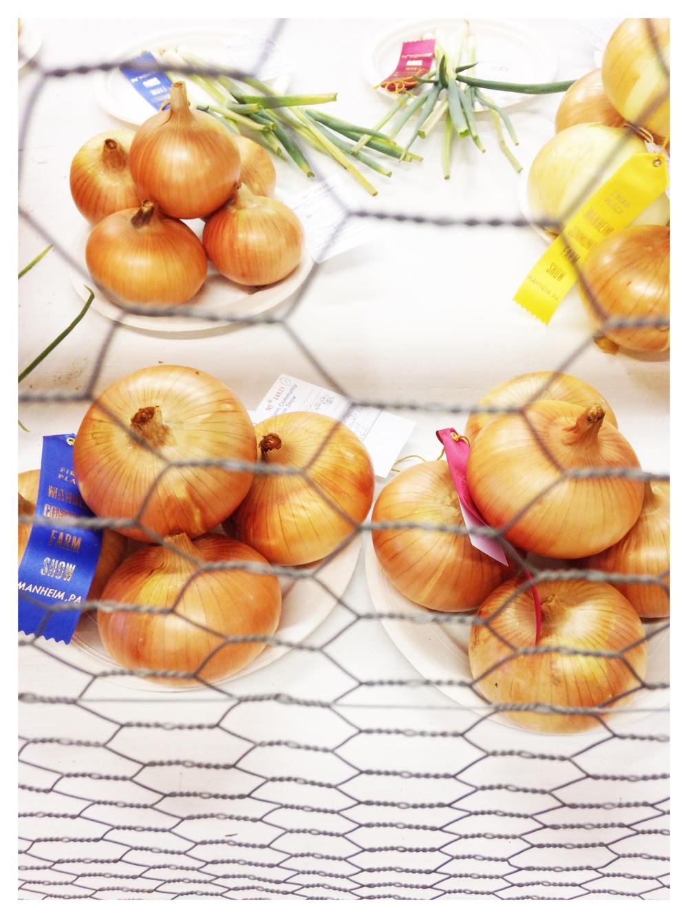 Prize-winning onions!