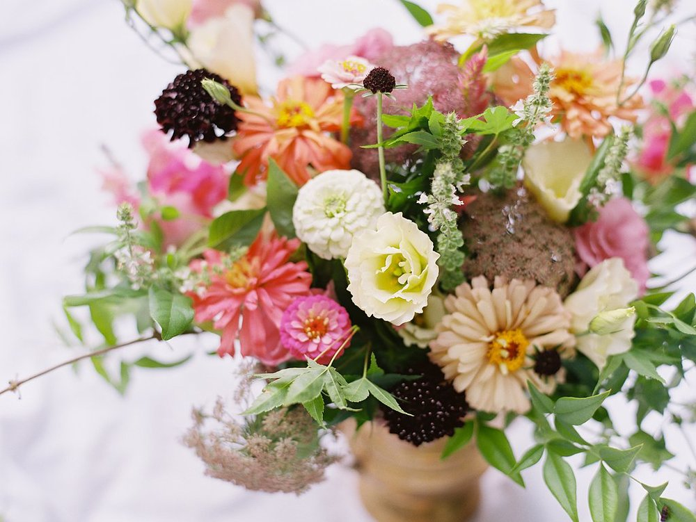 flowerswithsawyer6.jpg
