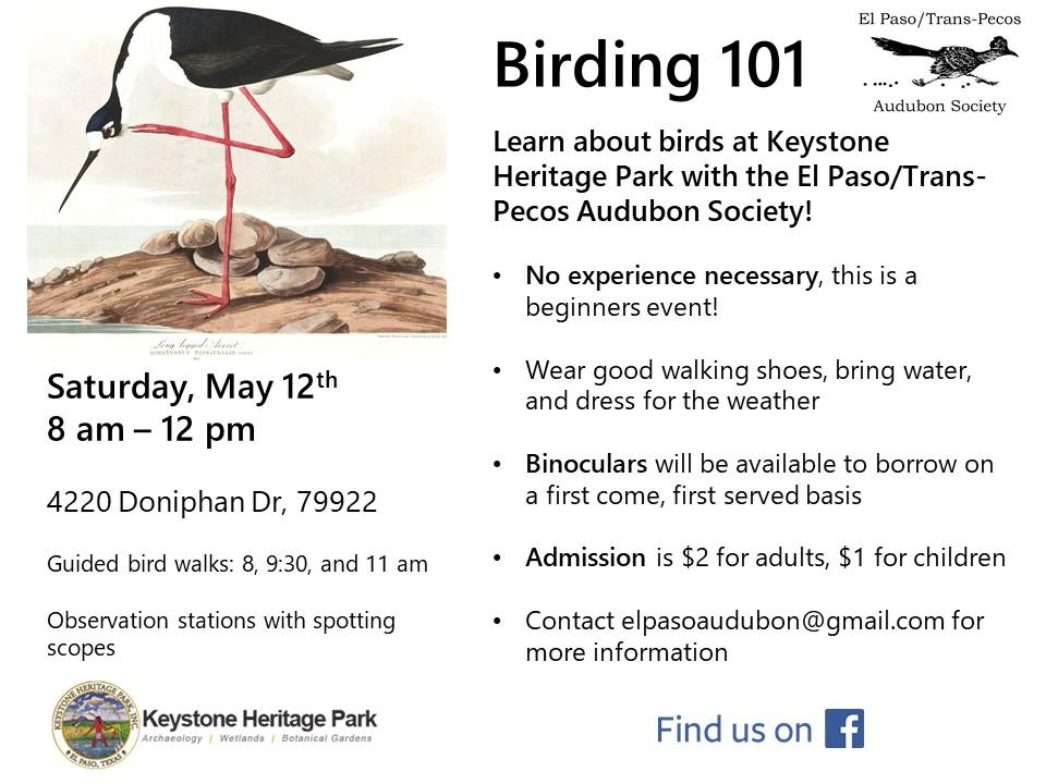 Birding101 flyer -May 2018.jpg