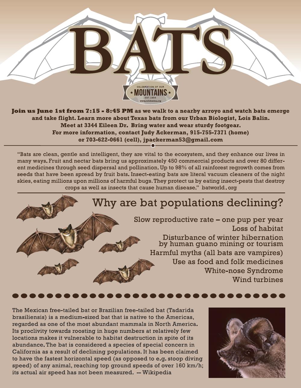 Bats flyer 2018.png