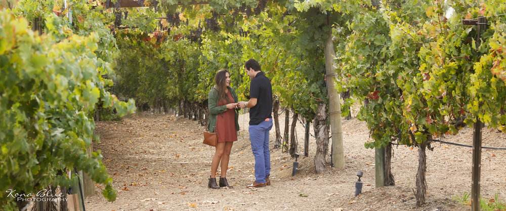 Aaron&Dana (2).JPG