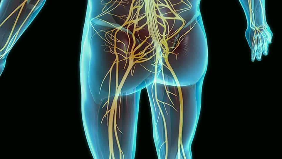 Healthy Q A Supplements For Sciatic Pain Pass Health Foods