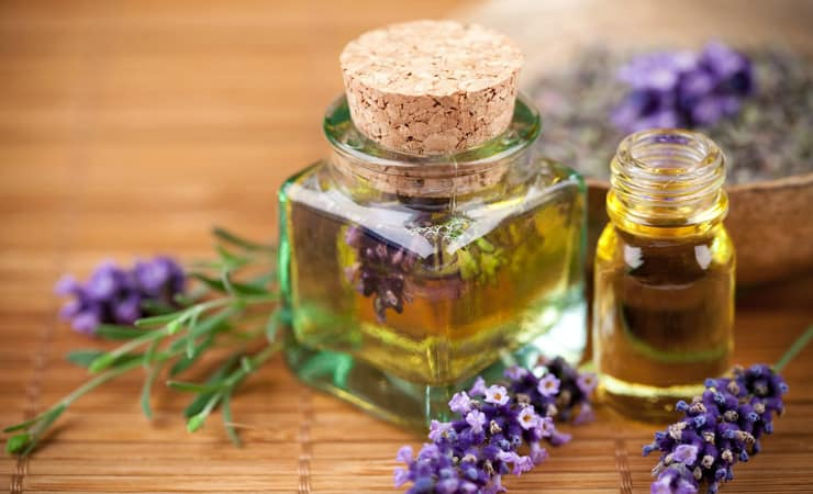 Image result for lavender and tea tree oil