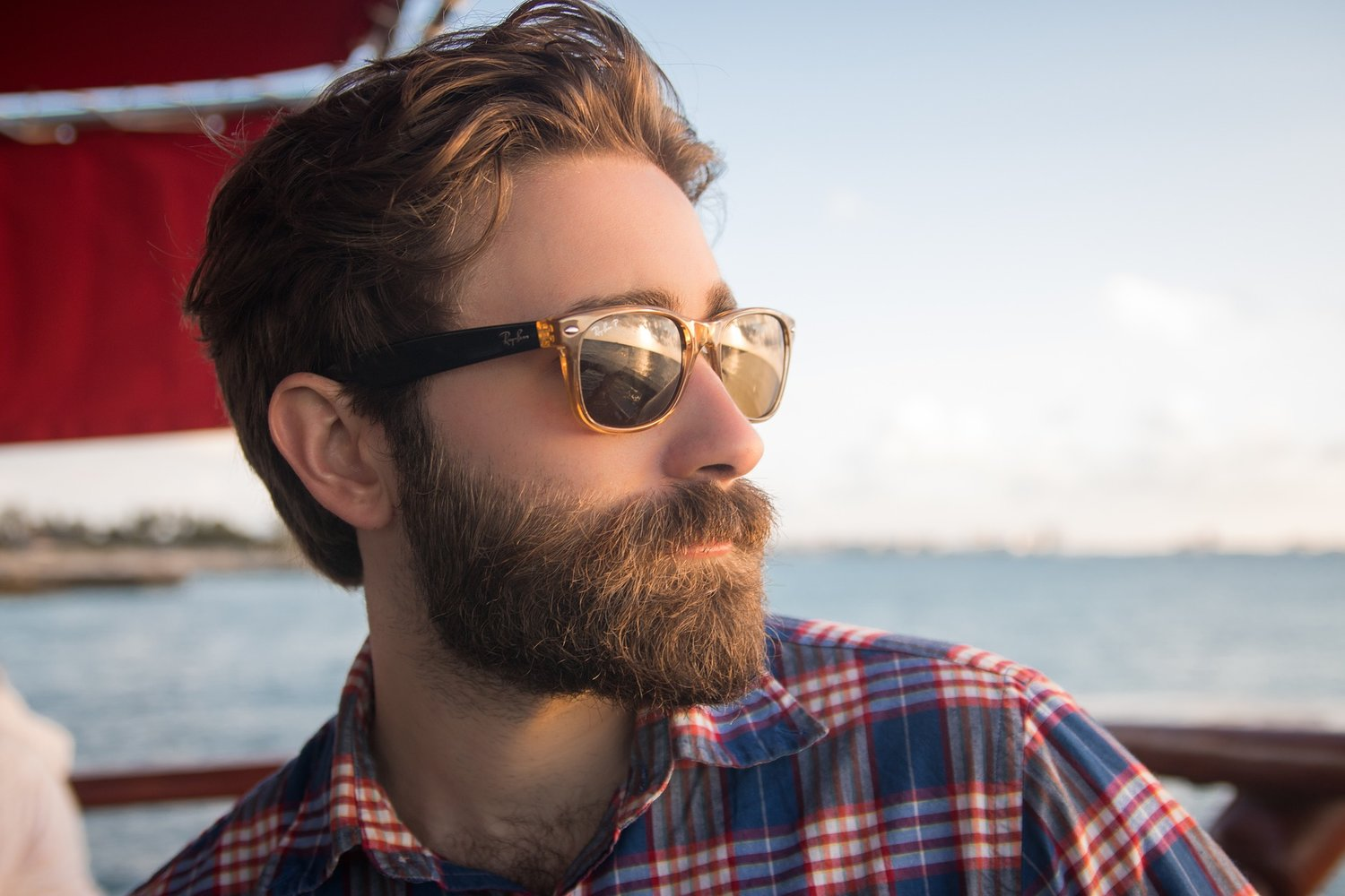 Natural Beard Oil Recipe - DIY with Essential Oils — Pass