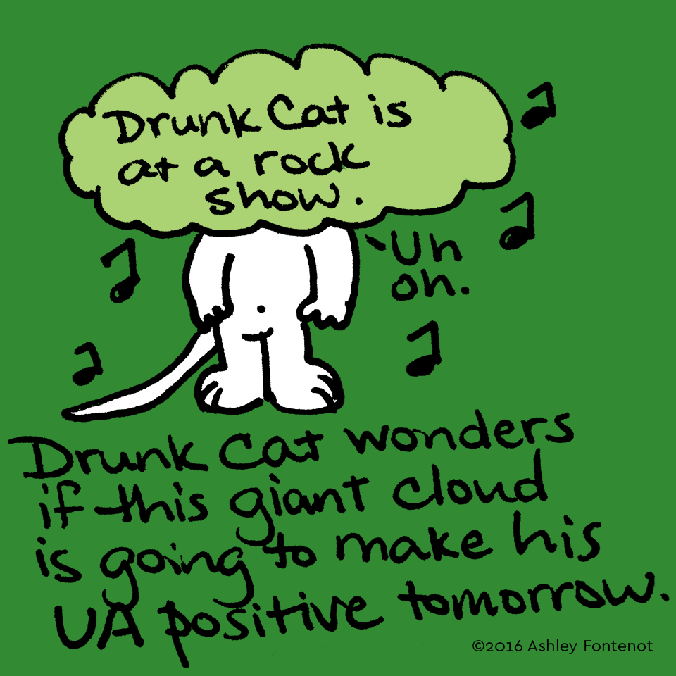 Drunk Cat Has to Drug Test Tomorrow