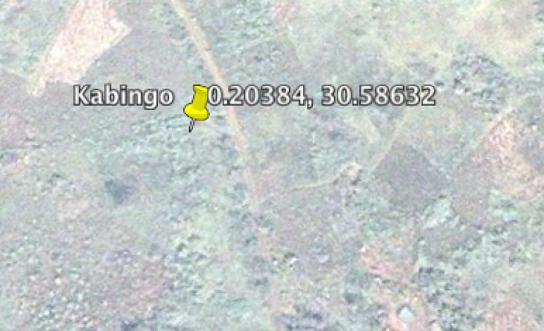 Kabingo.png