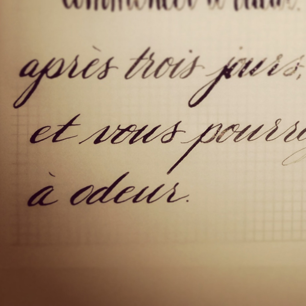 calligraphy-quote-french.jpg
