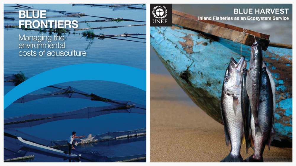 The first global assessment of the resources required for the current and projected demand for farmed fish.