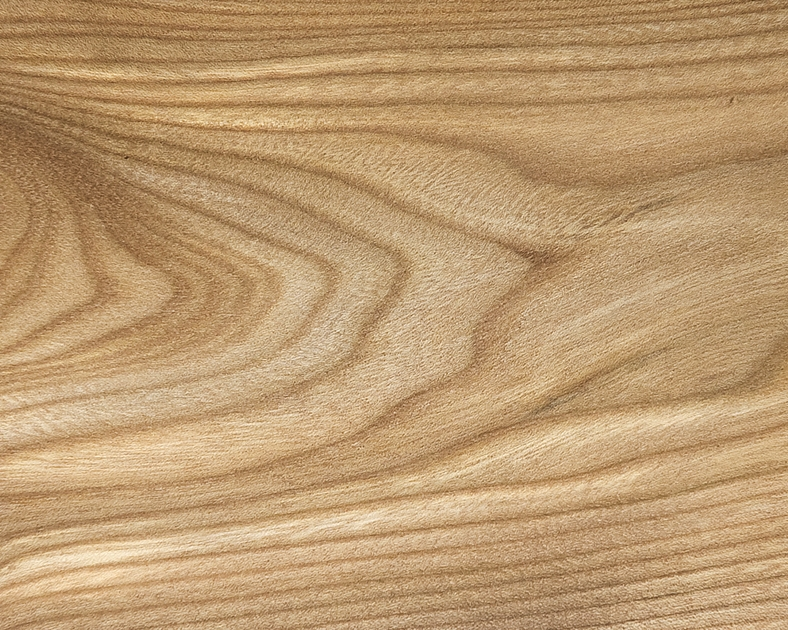 Scottish Hardwood: Elm