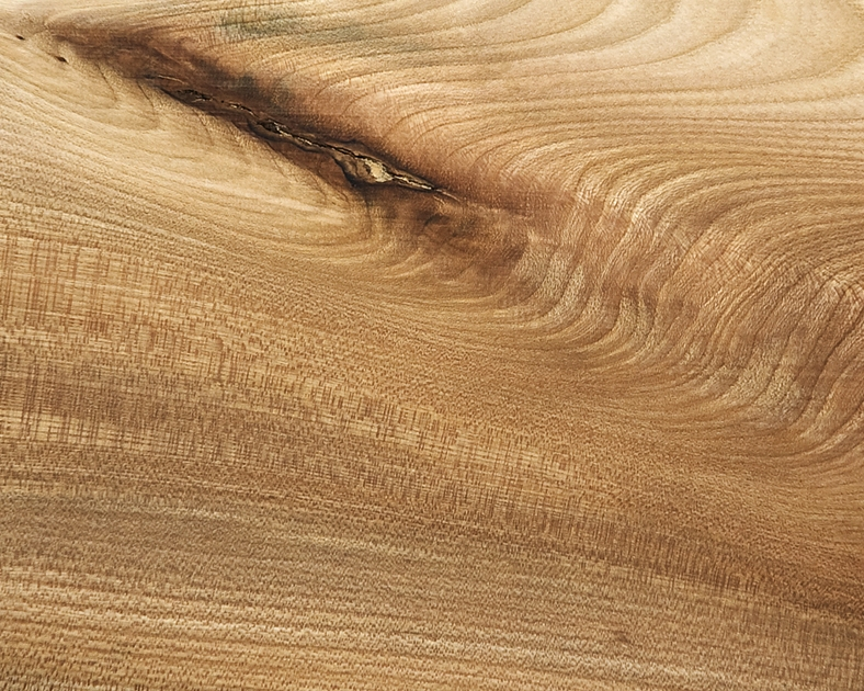 Scottish Hardwood: Elm Bark Pocket