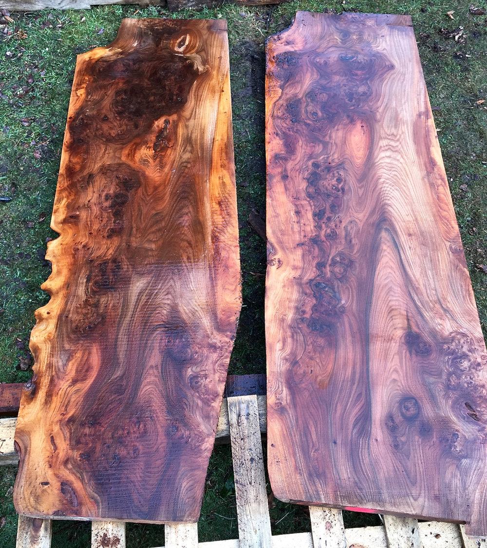 Pair of Burr Elm Boards