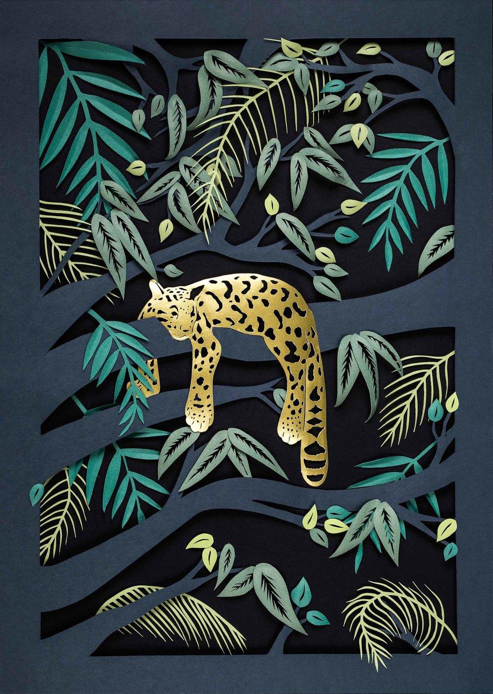 Sarah Dennis Leopard 01 Jo Hounsome Photography-1.jpg