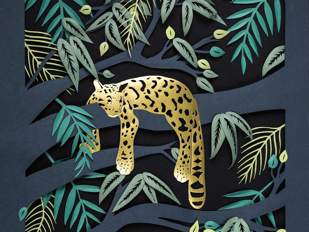 Sarah Dennis Leopard 01-1 Jo Hounsome Photography.jpg