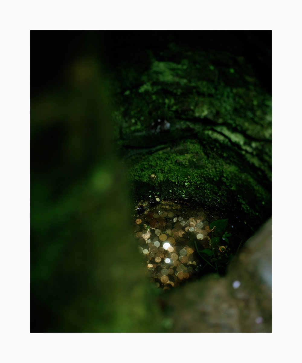 Untitled 10, from the series Folly.jpg