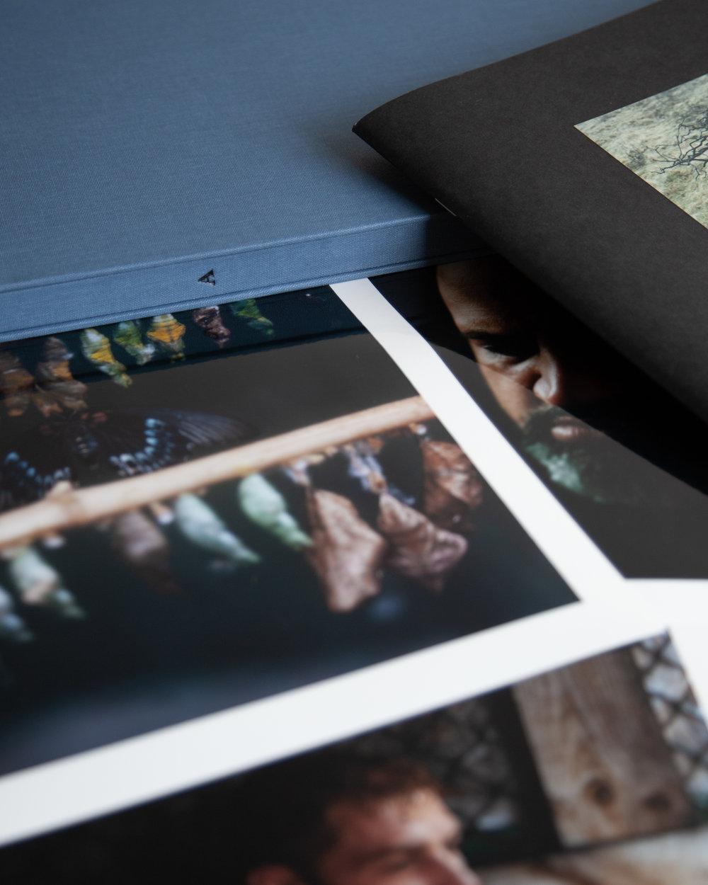 QEST portfolio-001.jpg