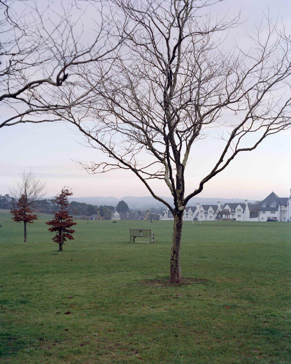 Poundbury 261118 - 10.jpg