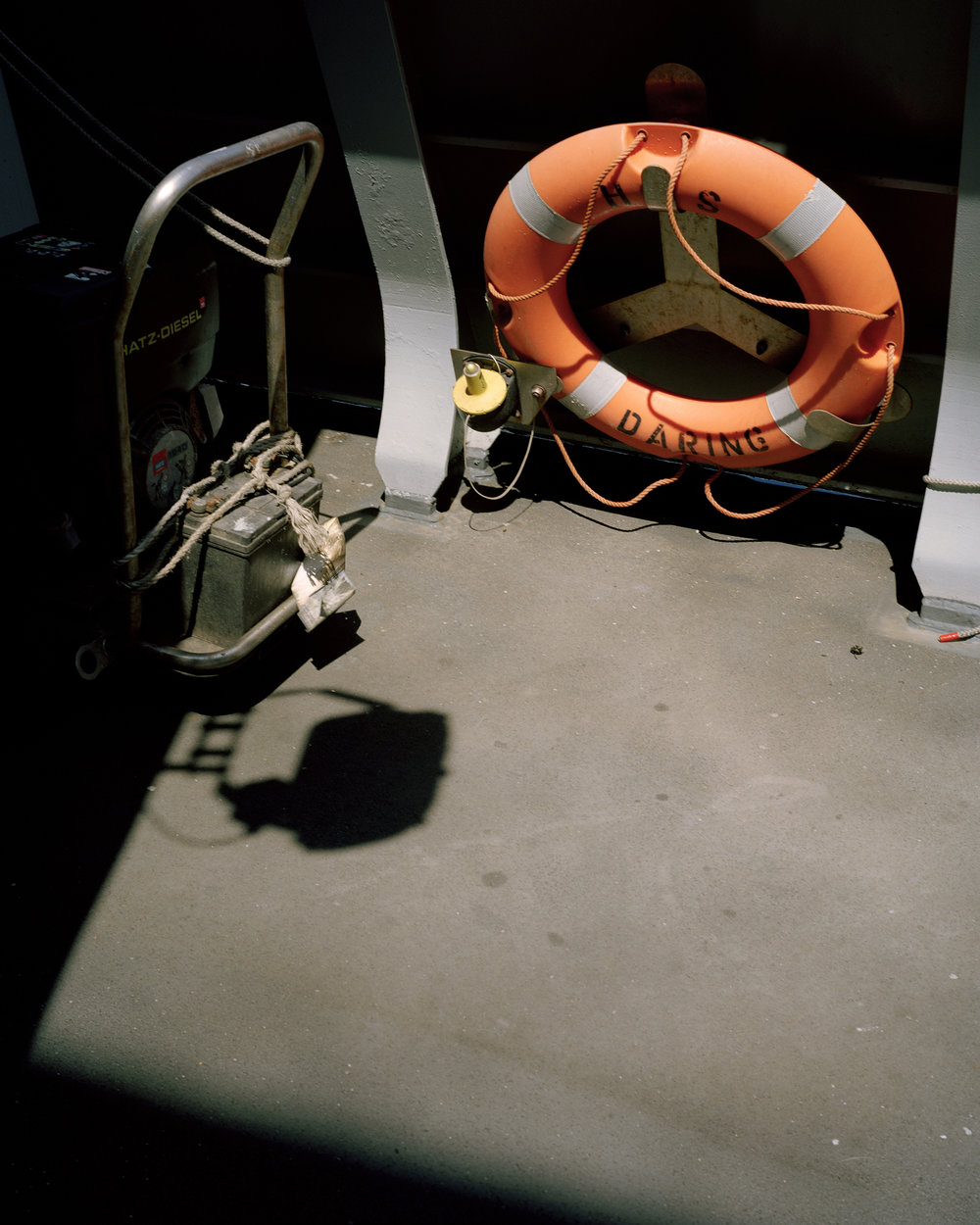 Untitled 15, from the series Albatross.jpg