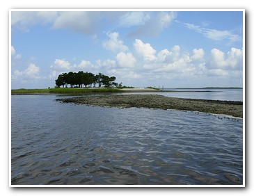 Winyah Bay - Rover Boat Tours