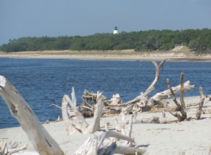 Shelling & Lighthouse Tour - View of Georgetown Light from Beach