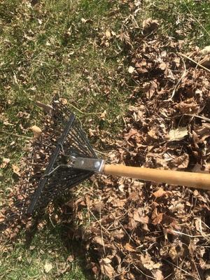 raking.jpg