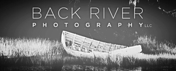 Back River Photography