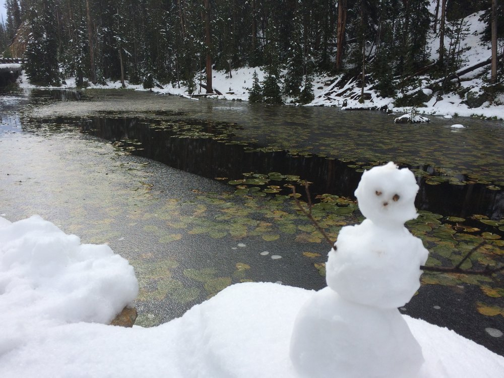 Built a snowman on the continental divide in Yellowstone.