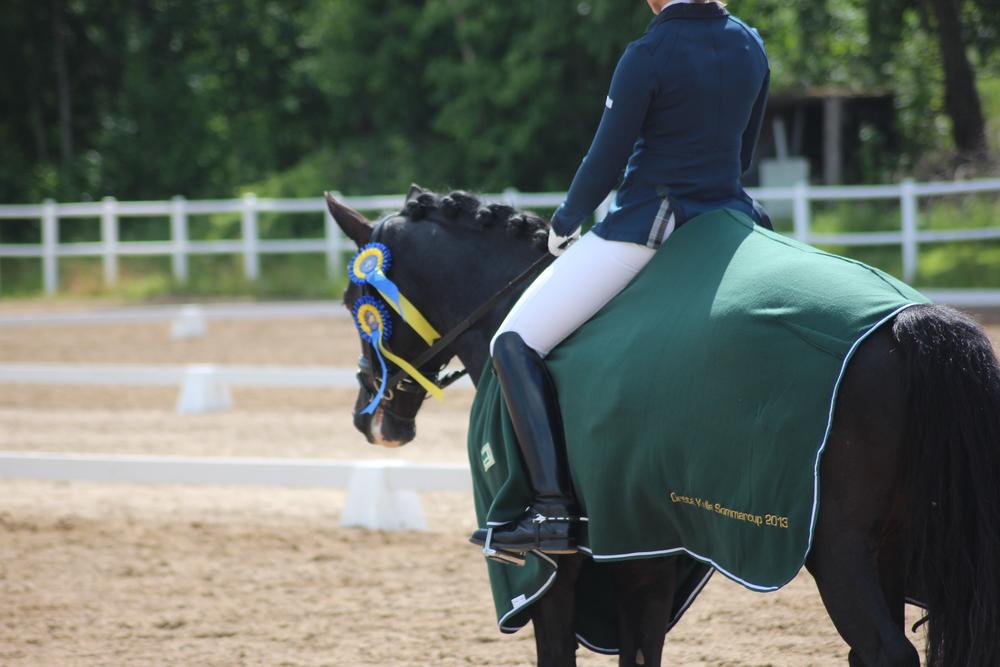 Hästar ̶