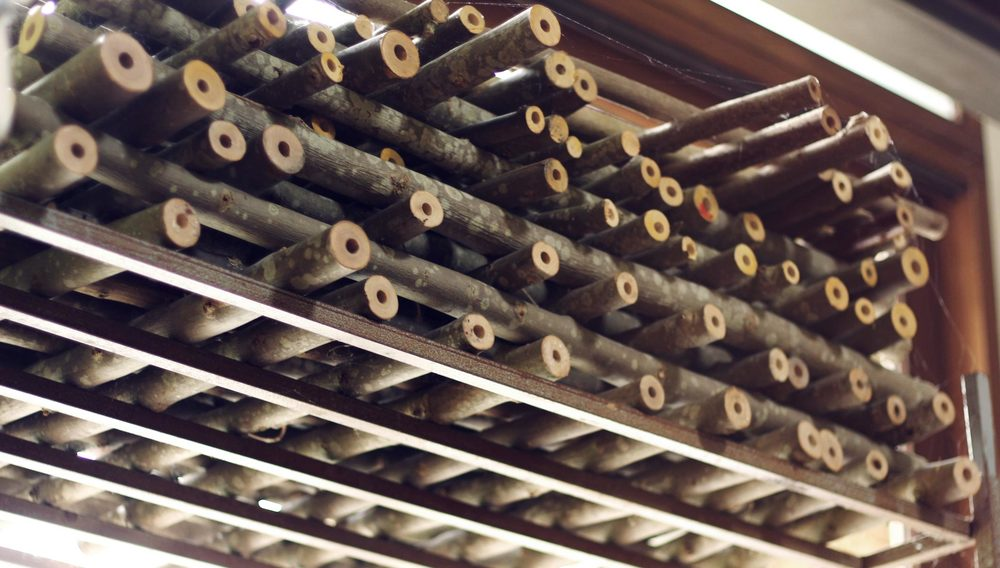 master-flute-maker-winne-clement-fluiten-luthier-craftsman-facteur-flûtes-flöten-hersteller-music-instrument-wood-wind--curing-supply-ash-drilled-hand.jpg