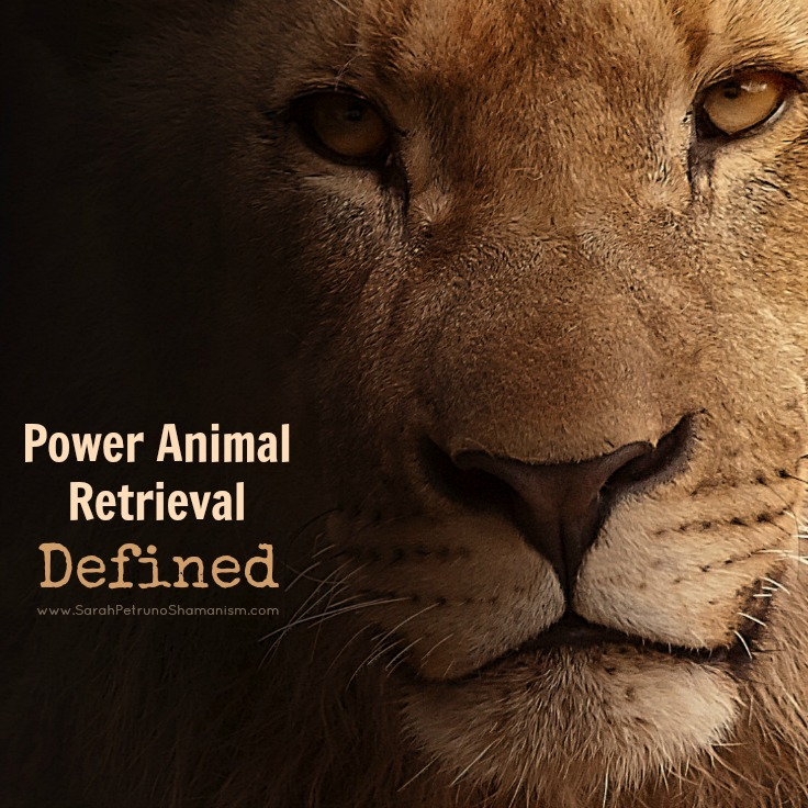 What is a Power Animal Retrieval?Learn more about what this age-old practice is and how you could benefit from it.