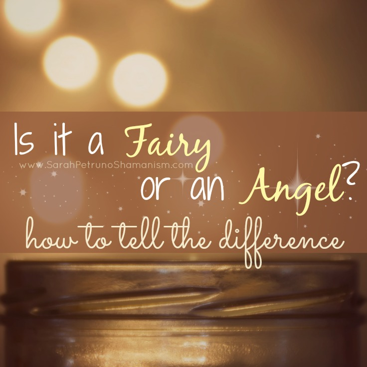 Angel Flash vs. Fairy Sparkle: How Can you Tell?