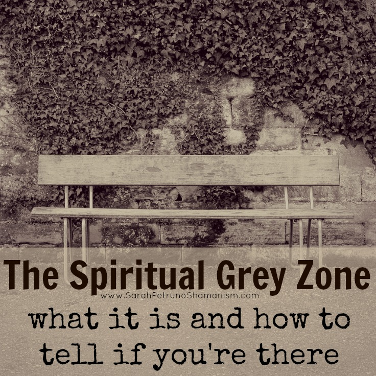 Middle of Nowhere: What Happens When a Spirit Enters the Grey Zone by Sarah Petruno, Shamana