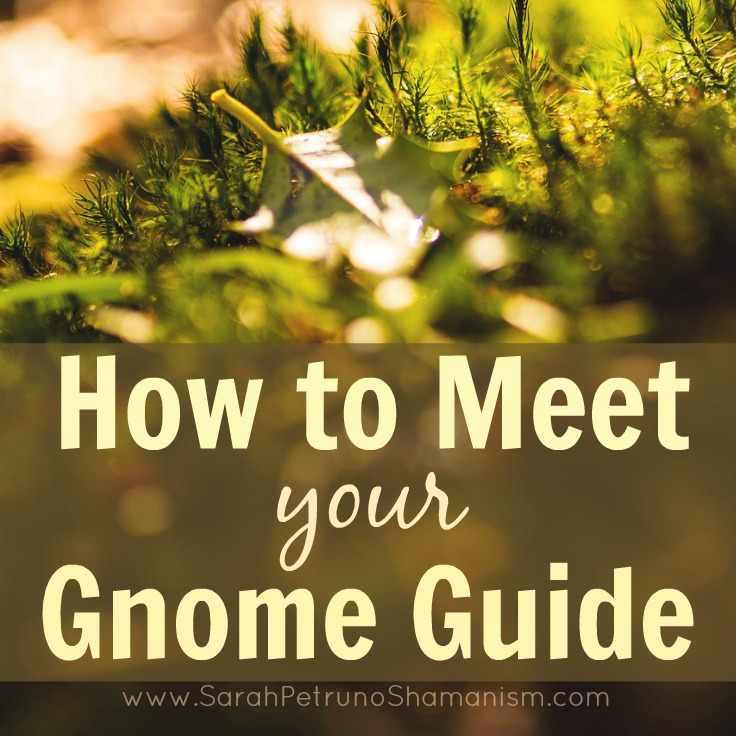 Discover Gnome Guides and learn how you can meet yours
