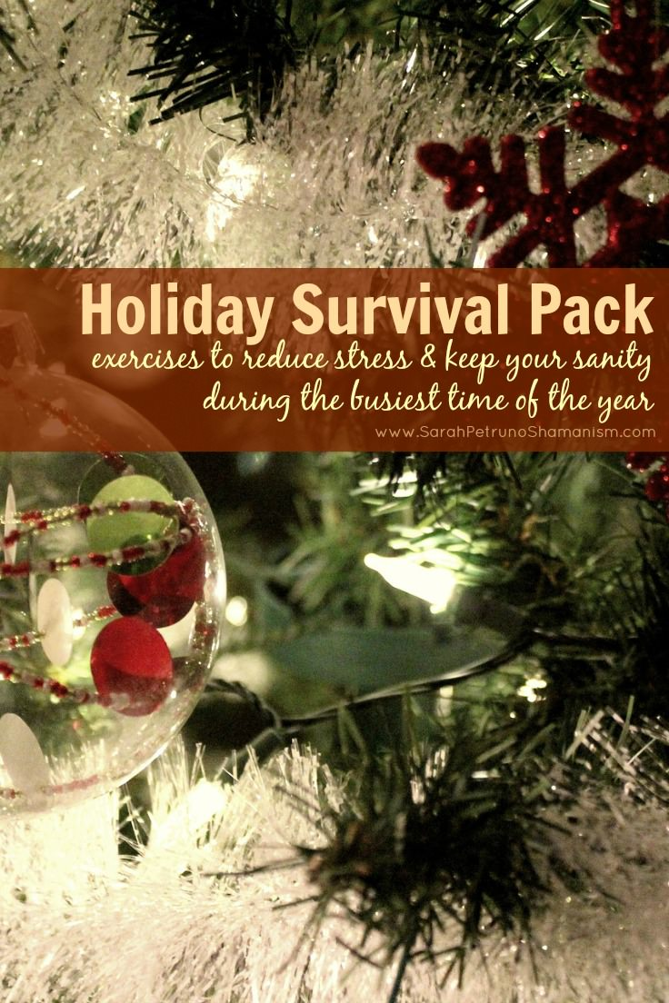 The keys to reducing your stress and staying sane during the busiest time of year - get them in my Holiday Survival Pack!